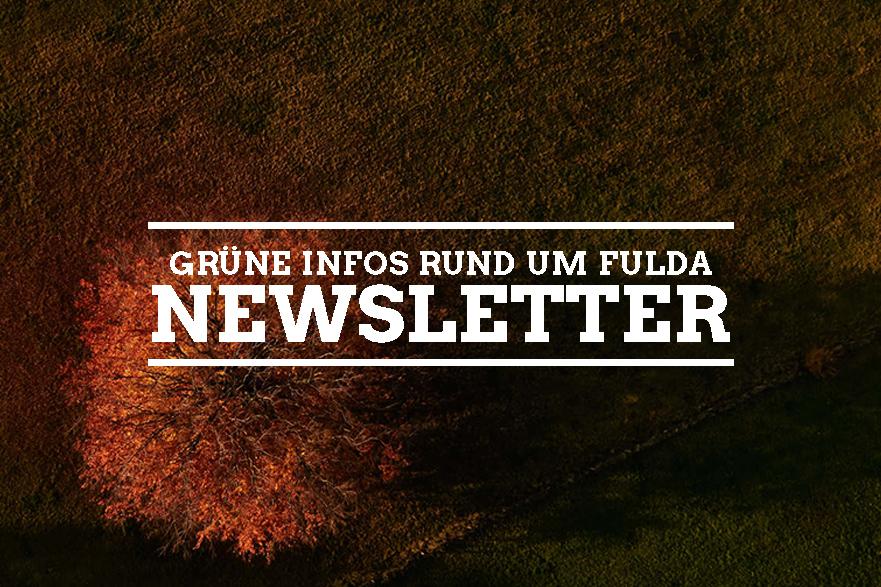 GrünerNewsletter 28/08/20